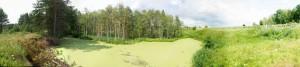 Востановление озера Провал у кладбища села Мухтолово снимок июль 2012