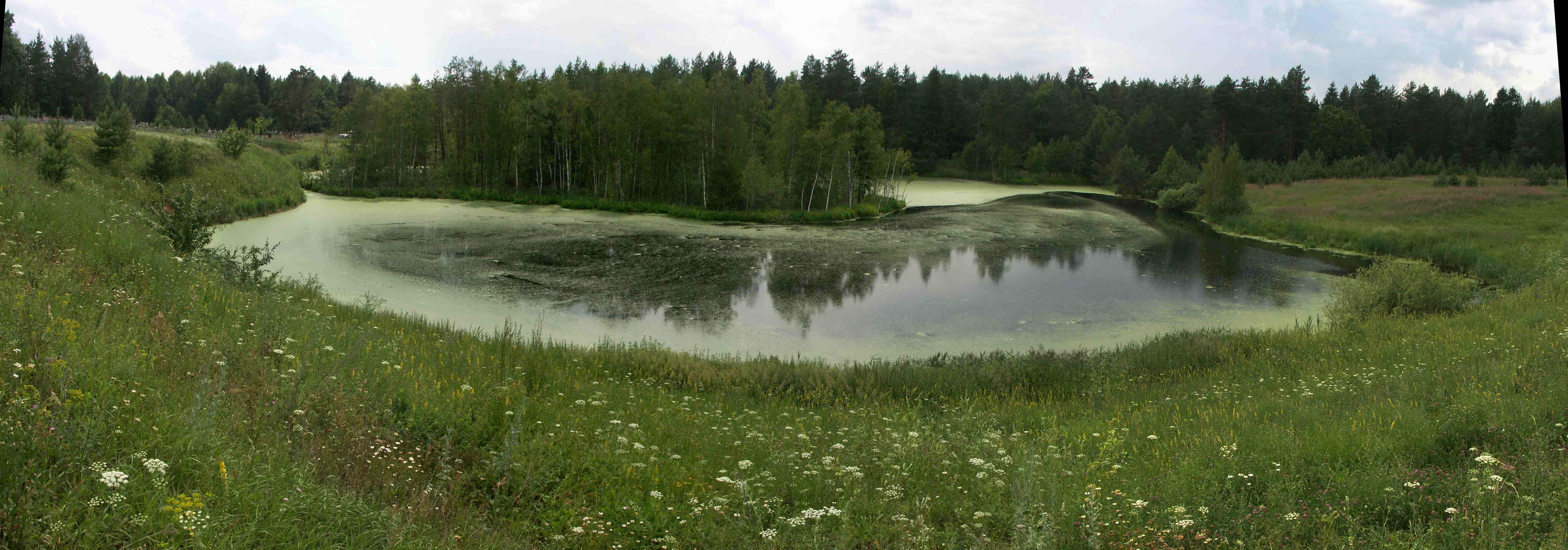 Востановление озера Провал у кладбища села Мухтолово снимок июль 2012 b